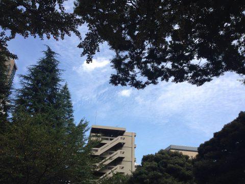 青い空の真下で